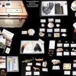 #3 2013 HR Junior Paleonotlogist Educational Kit - Canaveral National Seashore
