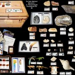 #6 De Soto 2014 JR - kit