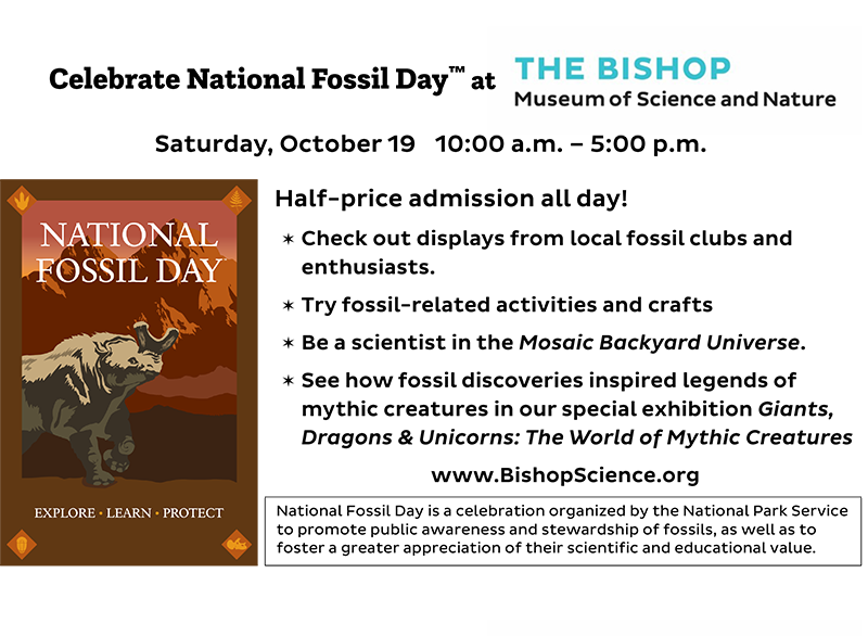 National Fossil Day is Oct 19 at The Bishop